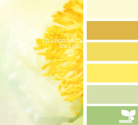 25 Best Ideas About Yellow Color Schemes On Pinterest