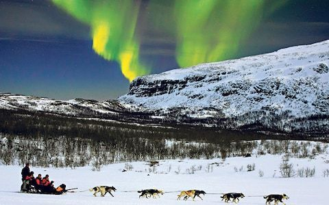 Combine a Northern Lights viewing tour with dog sledding