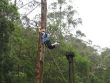 Camp Eden....jumping to the swing, scary stuff !