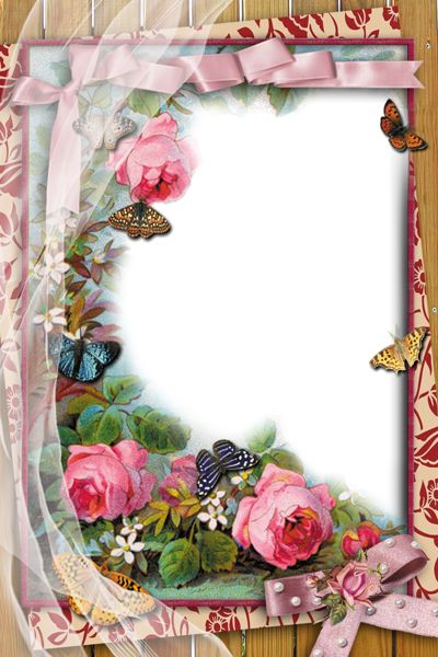 Transparent Frame with Flowers and Butterflies   Marcos para todo ...