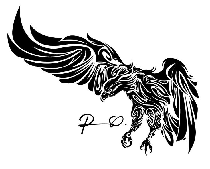 Tribal eagle by roberto ojeda picture 2d illustration for Tribal eagle tattoos
