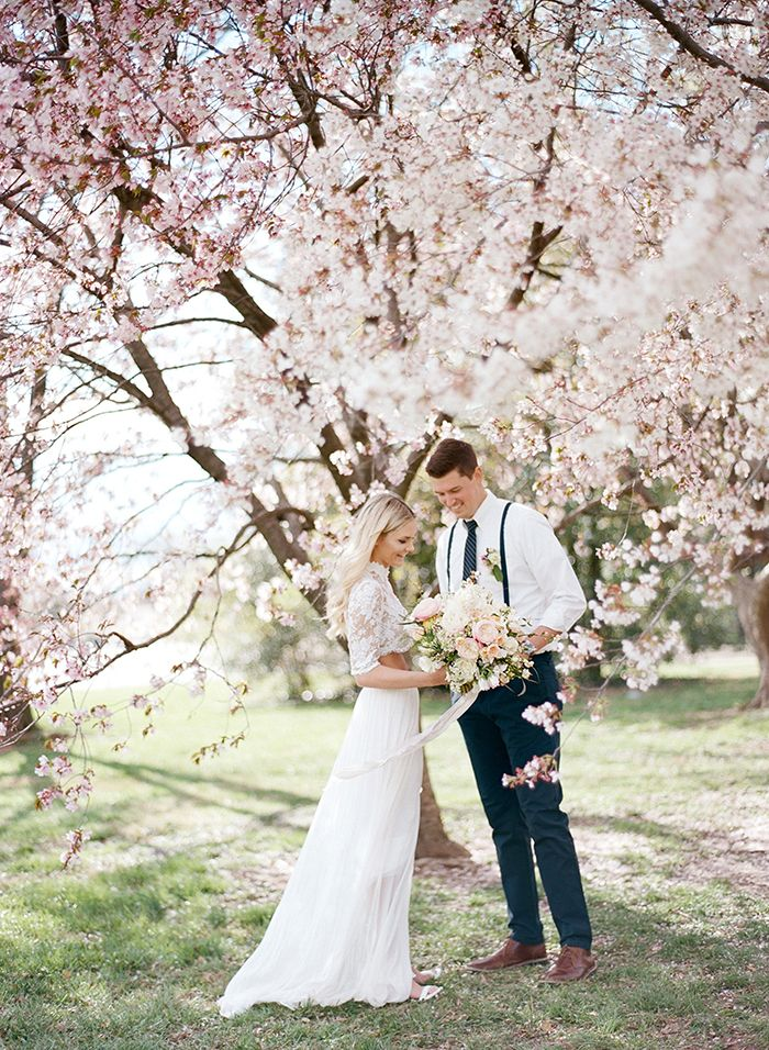 Stunning Cherry Blossom Wedding Photos under Blooming Spring Trees