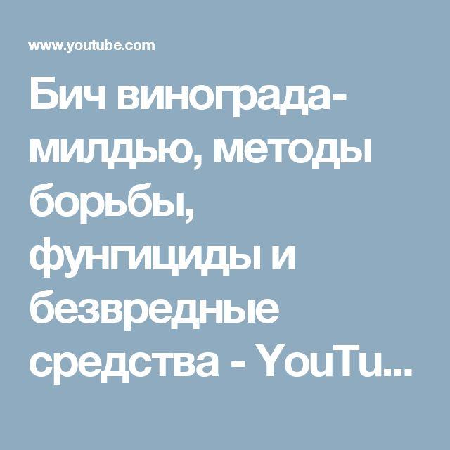 Бич винограда- милдью, методы борьбы, фунгициды и безвредные средства - YouTube