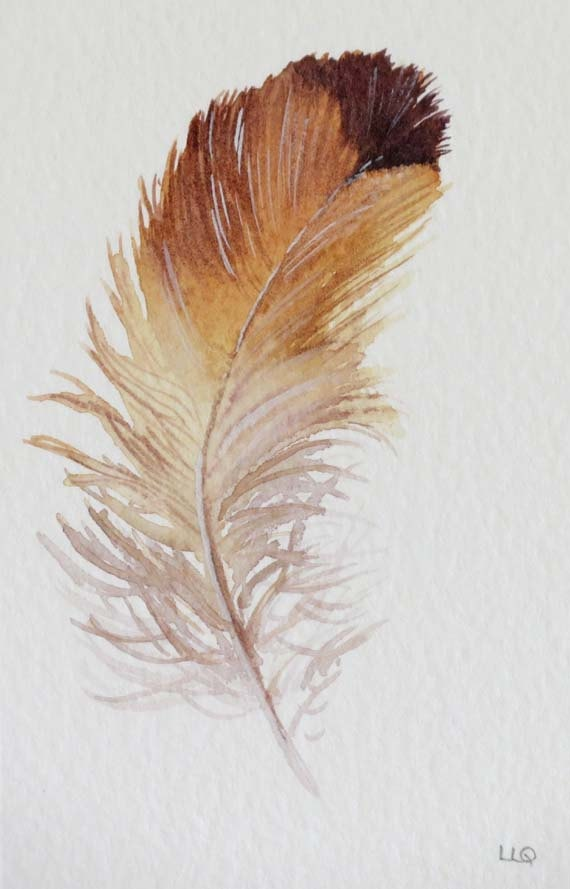 Feather original watercolour painting illustration art drawing. £35.00, via…