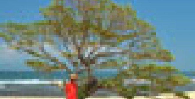 POK BEACH SINGLEChallenging Hidden Heaven Guts,,,,
