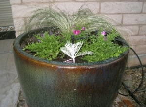 If watering your potted plants is becoming a chore, consider putting them on an automatic irrigation system.