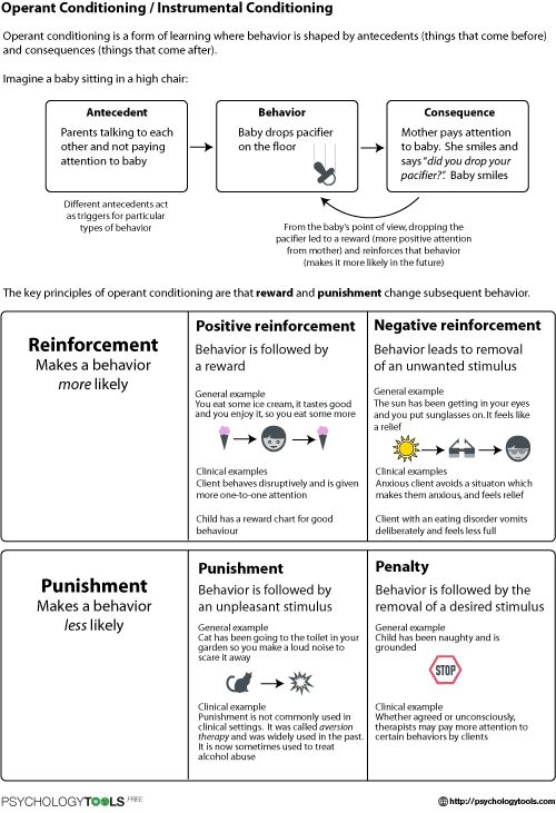 131 best ABA images on Pinterest Aba autism, Autism and Clothing - program evaluation forms