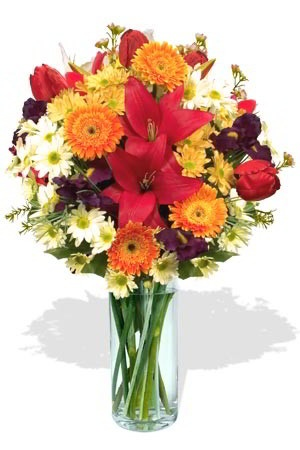 """Occasion    Alluring, adorable, astonishing. There is Colour all round in this fascinating mixed bouquet of seasonal flowers; Asiatic Lilies, Chrysanthemums, Gerberas, and Tulips. There has never been a more appropriate description """"a lovely bunch of flowers, suitable for any occasion,"""" - hence the name. $102.91"""