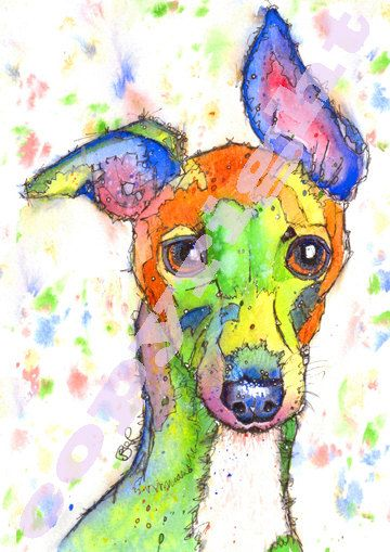 Whippet watercolor print. Etsy listing at https://www.etsy.com/listing/189919388/fabulous-print-of-original-watercolour