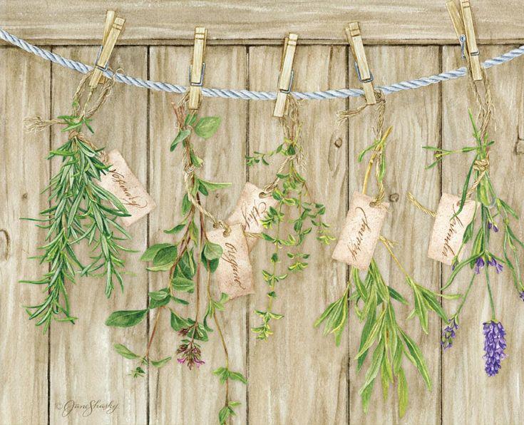 Lang | October 2014 Wallpaper Covers | Herb Garden