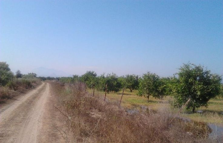 Agricultural Land For Sale In Belek, Turkey. Visit https://www.spotblue.com/turkey-property-for-sale/land-in-belek-bel103/ or email info@spotblue.com for more information.