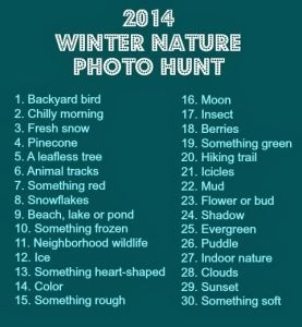 If you need a little inspiration to get the kids outside this winter, grab a camera and this FREE printable and go!