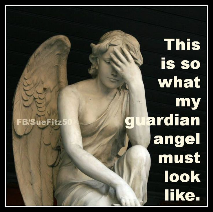 My guardian angel ) (With images) Funny pictures fails