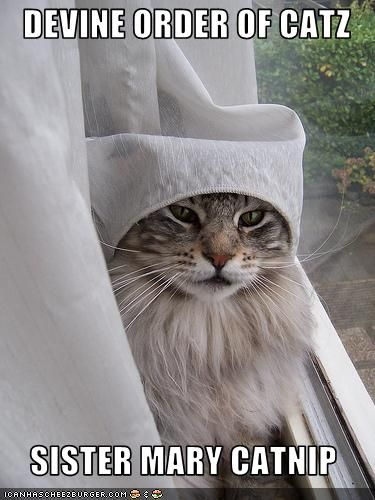 Sister Mary Catnip will pray for you