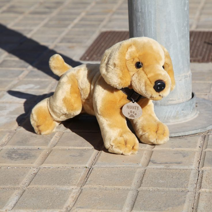 Los peluches son lo más tierno y suave que hay, los perros Labrador rebosan ternura y simpatía por donde van... ¿Te imaginas un Perro Labrador de peluche?  Wakabanga te trae desde el Reino Unido para ti el Perro Labrador de peluche de 35 centímetros cuyo nombre es Monty. Si te apasiona esta raza o los perritos en general, este perro Labrador de peluche te encantará.