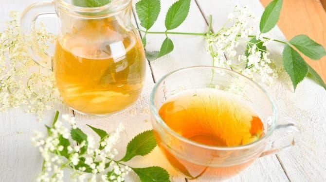 Pripravte si bazový čaj: Vylieči vám dutiny aj upokojí pokožku