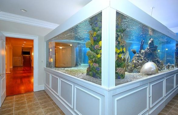 Celebrestate: Gilbert Arenas' Shark Tank is So Gilbert Arenas (PHOTOS) - the other side of the tank from a different room