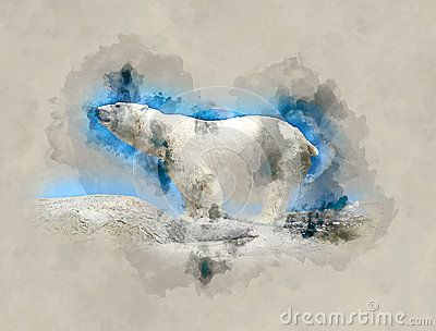 Polar bear watercolor art for your design.