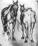 "New artwork for sale! - "" Pisanello Horses by Antonio Pisanello "" - http://ift.tt/2pugcuA"