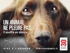 Fondation 30 Millions d'Amis. Faites comme moi, devenez maître de coeur pour les animaux...