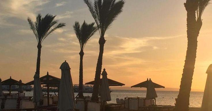 """Neue Nachricht: Nach Anschlägen - """"Es kann einen überall treffen"""": Was Reisende denken die jetzt nach Ägypten fliegen - http://ift.tt/2oXQeDd #nachrichten"""