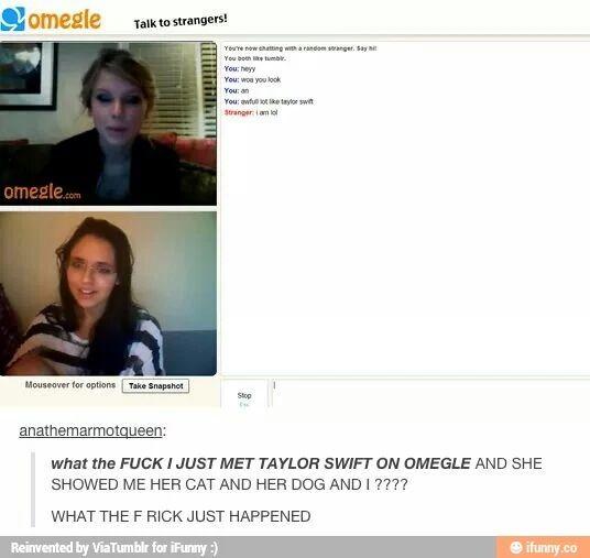 Wait Taylor Swift has pets