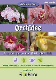Guida pratica Florarici alle orchidee by paolo arici - issuu