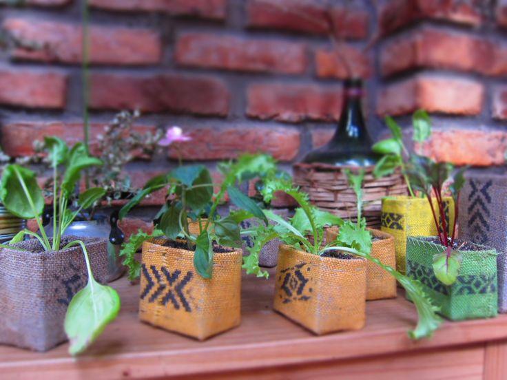 Hortalizas, plantas ornamentales! $3.000 c/u