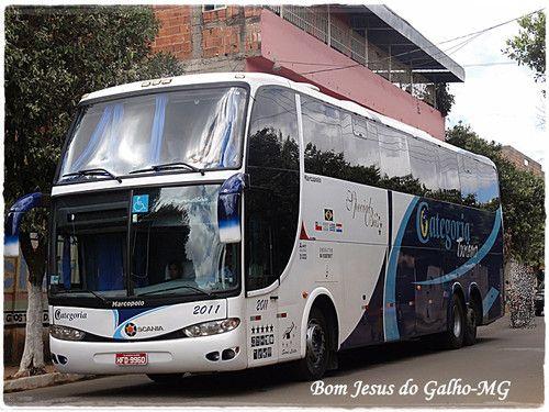 donybuss   Categoria Turismo 2011
