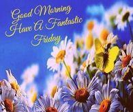 Good Morning Have A Fantastic Friday