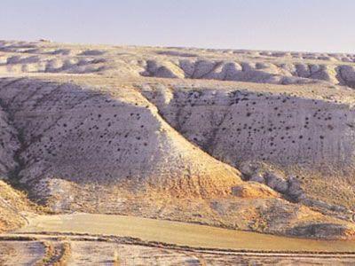 as Estepas de Belchite aparecen como una extensa y colorida llanura situada a 400 metros sobre el nivel del mar, que en ocasiones despunta en cerros y cabezos desde cuyas alturas se observa un mosaico en el que se intercalan cultivos cerealísticos de secano, barbechos y ralas manchas de vegetación autóctona.