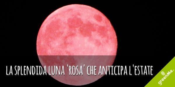 Luna rosa o della fragola: ecco perché il plenilunio di giugno era caro ai nativi americani