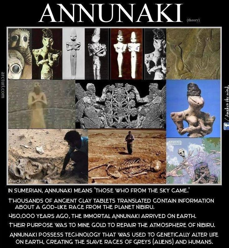 Annunaki - Source: https://www.facebook.com/photo.php?fbid=368245636614635=a.292355070870359.57430.292327470873119=1 LOOK at the size of the skeletons!!!