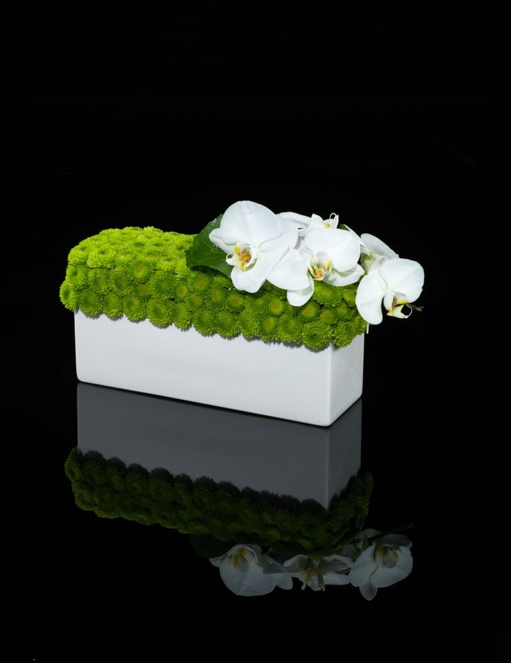 Modern centerpiece Green Mums in White ceramic trough with White Phalaenopsis Stunning Simplicity............