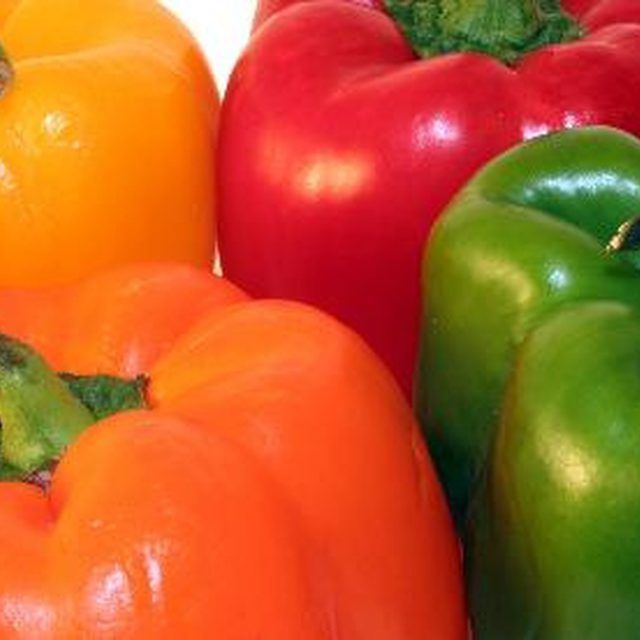 Bell pepper plants benefit from several applications of fertilizer.
