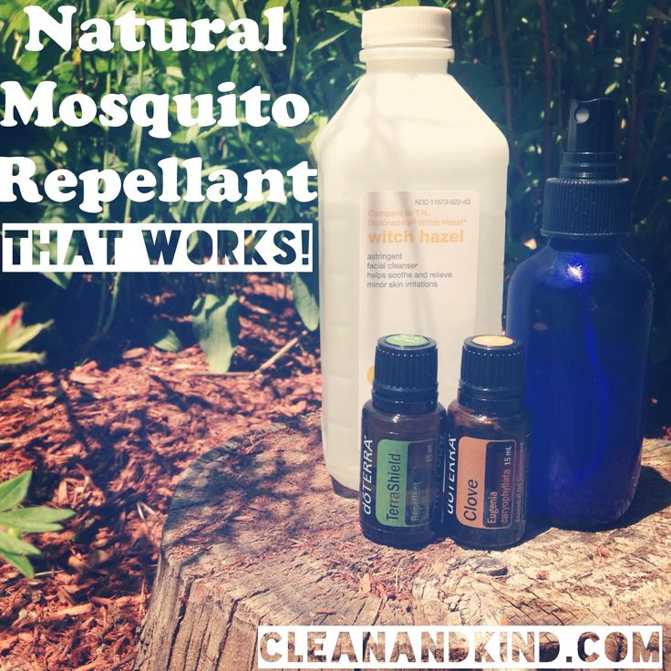 21 Refreshing Redneck Recipes And Camping Food Ideas: 21 Best DoTERRA Terra Shield And Usage On Bugs Images On