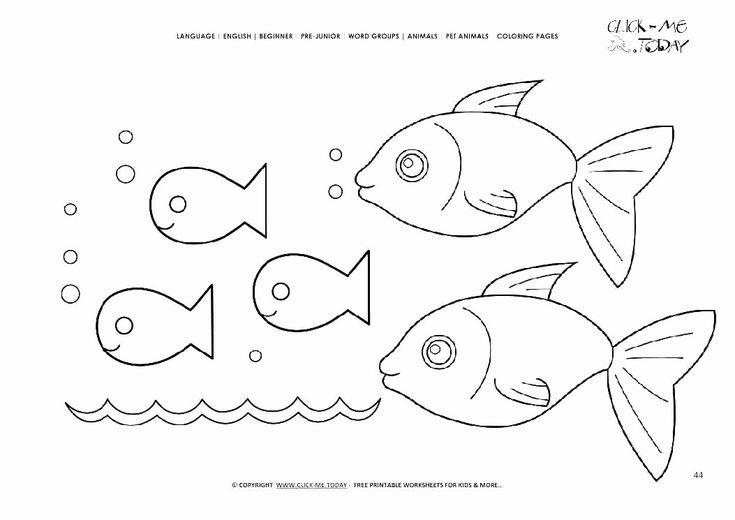 Rainbow Fish Printable Worksheets Elegant Fish Worksheets
