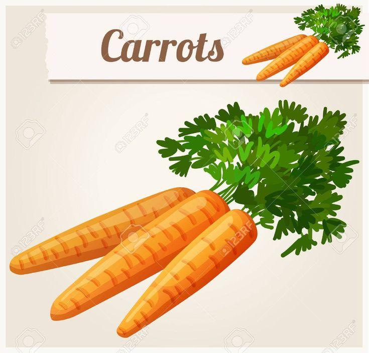Carote vector dettagliata icon serie di cibi e bevande e for Cucinare carote