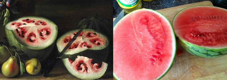 A 17th-Century Stanchi Painting Reveals the Rapid Change in Watermelons through Selective Breeding