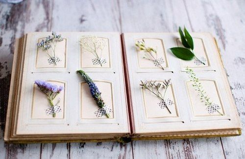 press flower book