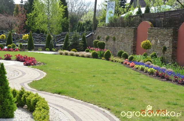 zielono mi...czyli ogrod iwony - strona 6 - Forum ogrodnicze - Ogrodowisko