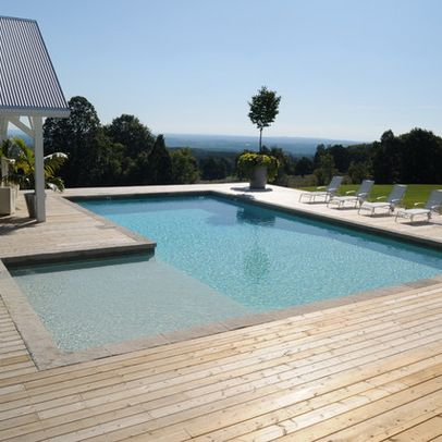 Pool With Tanning Ledge Design Ideas, Pictures, Remodel, and Decor - page 2