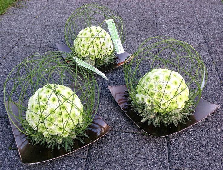 limewhite chrysanthemum, silvergreen eryngium, love the simplicity & use of negative space