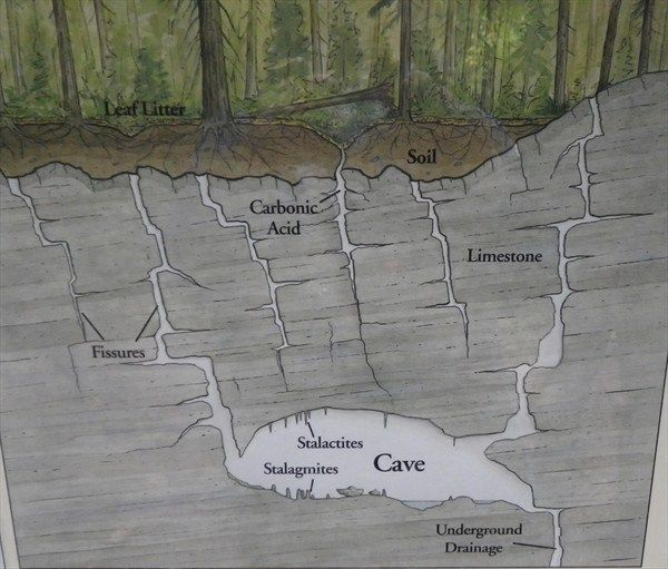 Karst Creek Earthcache Earthcache In British Columbia