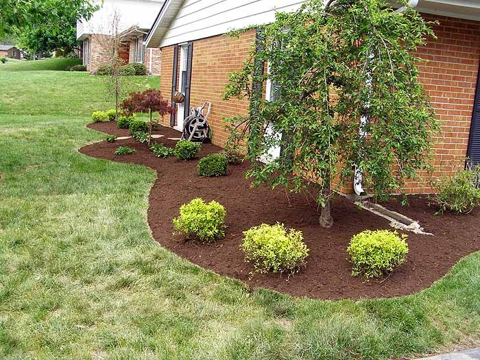 Landscape curved edging around house gardening for Landscape design pictures