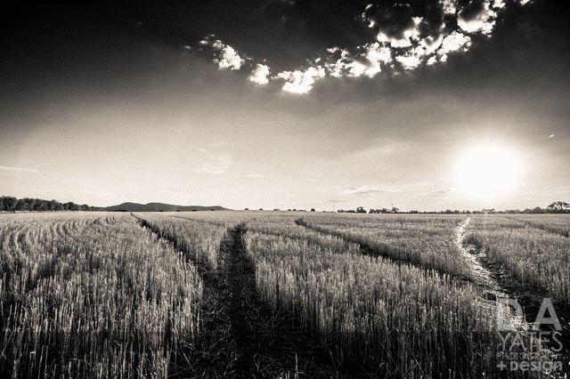 D.A YATES PHOTOGRAPHY + Design blog