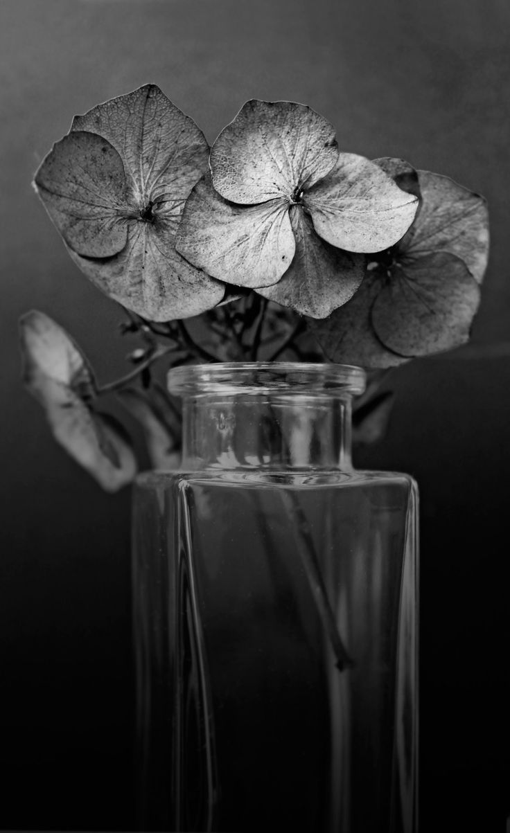 best grey gray gris images on pinterest shades grey colors