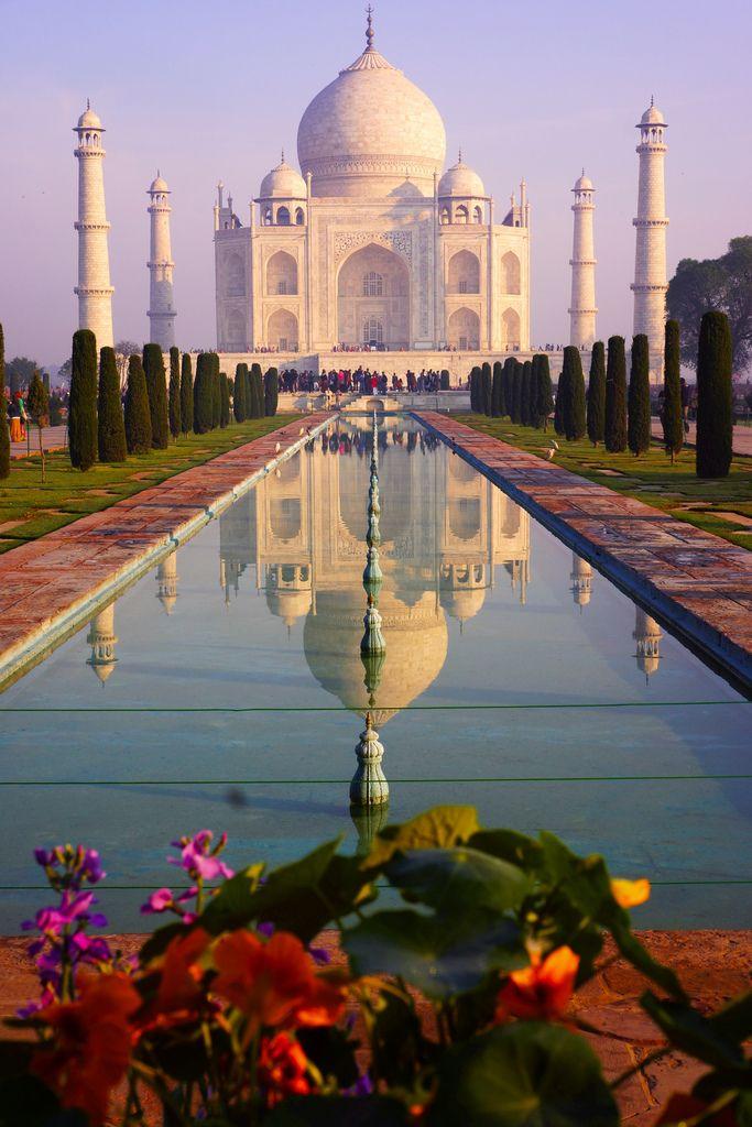 Le sublime Taj Mahal aux différentes couleurs de l'été, les arbres alignés, son reflet dans l'eau, les piliers parallèles.