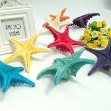 50 paketleri posta doğal deniz kabuklu kabukları ile derebeyi pentagon yıldız 13-14 cm dekoratif duvar mefruşat ürünleri platformu(China (Mainland))