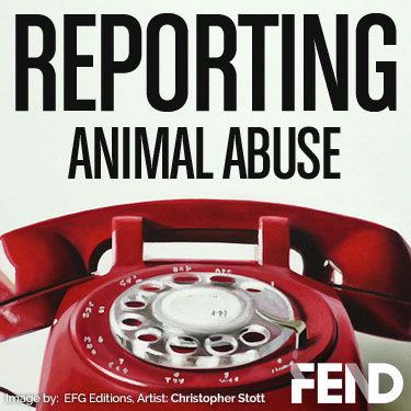 Hello! We recently added a new resource to the www.FEND.ngo website and wanted to share with everyone.  We've compiled information on recognizing signs of animal abuse along with a list of where to report animal cruelty crimes in each state. We will be adding resources for the UK, Ireland and Canada soon. Please share...you may help save a life.